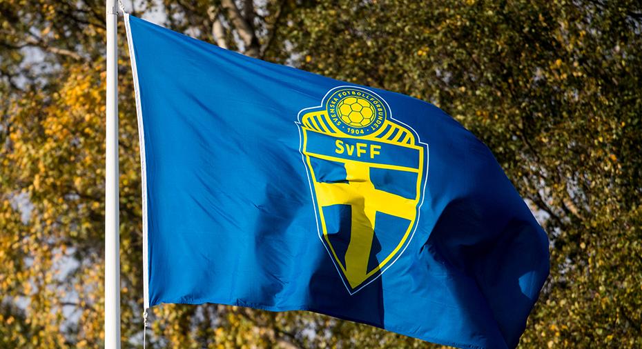 Samtliga allsvenska klubbar beviljas elitlicens för nästa säsong